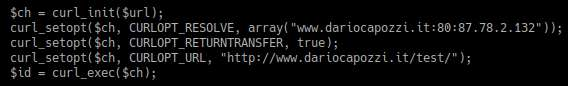risolvere dominio senza file hosts